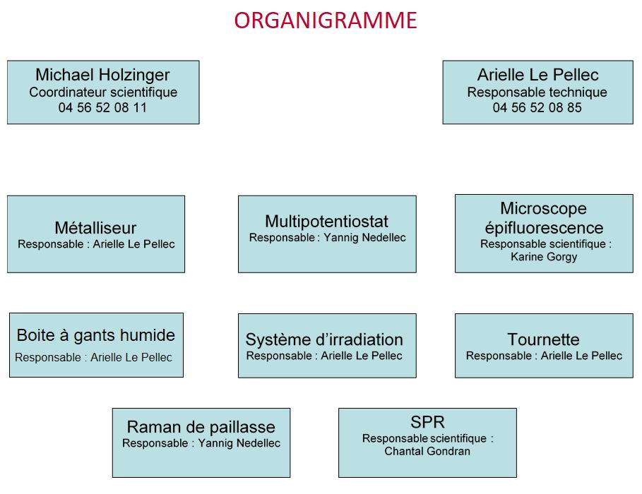 organigramme_pft.png